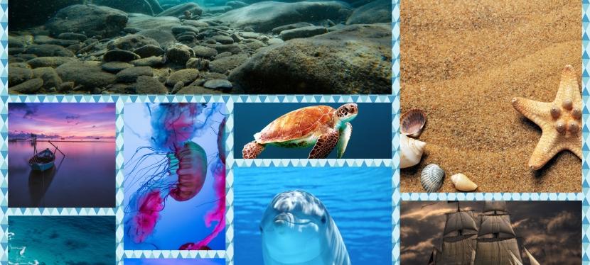Secretele Oceanului